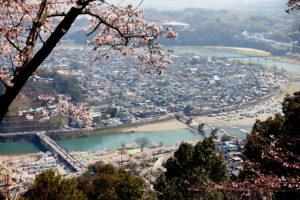 錦帯橋の桜をロープウェイから眺める